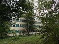 Будинок Інституту геофізики 7.jpg