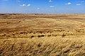 Вид с горы Мельтау (305,5 м.) в северном направлении - panoramio.jpg