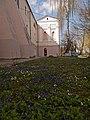 Вінниця - Єзуїтський монастир P1060476.JPG