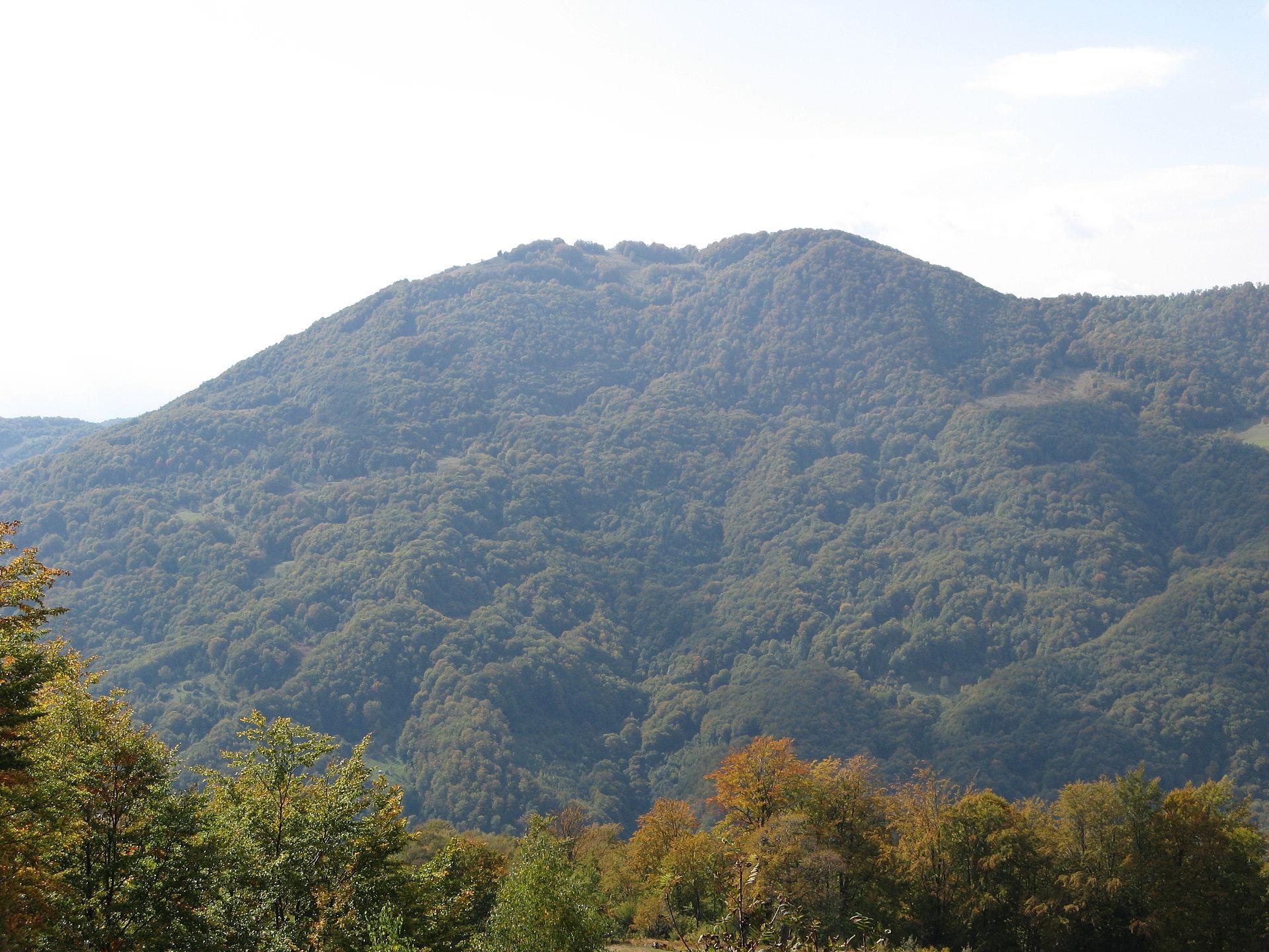 горная система карпаты реферат
