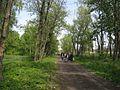 Дендрологічний парк 181.jpg