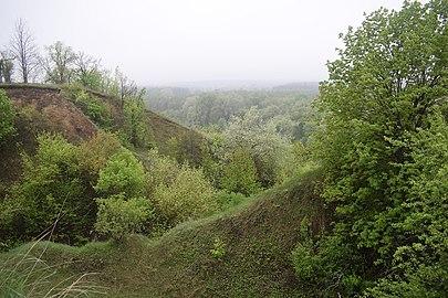 Зазеленіли шкуратівські пагорби.jpg