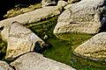 Каменьці..jpg