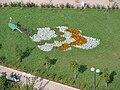 Клумба в саду у администрации г.Коряжма.JPG
