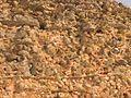 Крэва Крэўскі замак 1.jpg