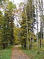 Осень в Дворцовом парке Гатчины - panoramio (4).jpg