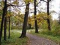 Осень в Дворцовом парке Гатчины - panoramio (7).jpg