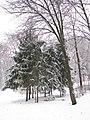 Парк Аскольдова могила взимку 01.JPG