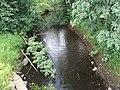 Река Пяля 2.jpg
