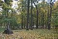 Роменський парк.jpg