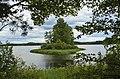 Смоленское Поозерье.Озеро Сапшо. Остров Гороховый.jpg