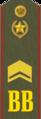 Старшина ВВ(Р).png