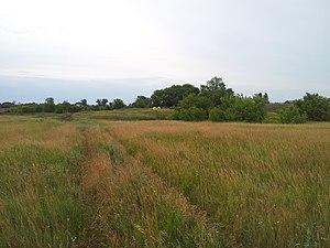 Alkeyevsky District - Landscape in Alkeyevsky District
