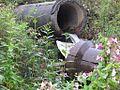 Труба, по которой производится сброс канализации в речку Дубровка на улице Пионерская - panoramio.jpg