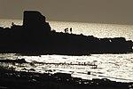 מבצר עתלית - אתרי מורשת במישור החוף 2016 (82).jpg
