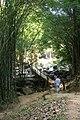 น้ำตกศรีดิษฐ์ Sri Dit waterfall - panoramio - Thaweesak Churasri (13).jpg