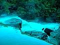 น้ำตกแก่งโสภา-Kaeng Sopha Waterfall - panoramio.jpg