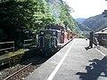 トロッコ保津峡駅 - panoramio.jpg