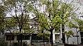 中央研究院0005 (23).jpg