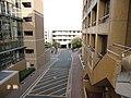 名城大学 - panoramio.jpg