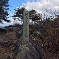 火山山頂の石碑.jpg