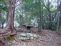矢走城跡 主郭 Main region, ruins of Yabase castle 2011.2.19 - panoramio.jpg