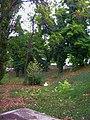 - panoramio (5174).jpg