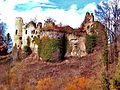 . Ruines du château.du Morimont (2).jpg