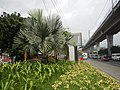 02328jfBalintawak Interchange Caloocan Quezon City FootbrindgeEDSA Roadfvf 25.jpg