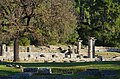 02 2020 Grecia photo Paolo Villa FO199984 (Olimpia parco archeologico - Tempio di Era colonna di ordine dorico - crepidoma - - Temple of Era column doric order - crepidoma).jpg