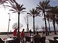 07600 Ses Cadenes, Illes Balears, Spain - panoramio (10).jpg