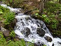 1000 Falls Cascades - panoramio.jpg