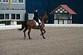 13-04-19-Horses-and-Dreams-2013 (42 von 114).jpg