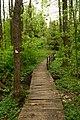 14-05-04-pramen-nysa-RalfR-DSC 1043-010.jpg