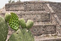 15-07-20-Teotihuacan-by-RalfR-N3S 9429.jpg