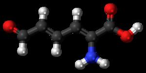 2-Aminomuconic semialdehyde - Image: 2 Aminomuconic semialdehyde 3D balls