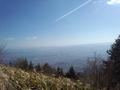 2000年頃の中葛城山山頂からの景色。五條市方面を望んだ物である。.png