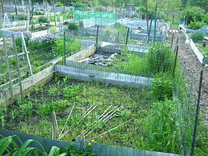community gardens boston, mass.