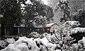 2008年大雪中的瞻园一角 - panoramio.jpg