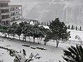 2008职中校园雪景 - panoramio.jpg