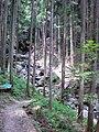 2010-7-29 - panoramio (3).jpg