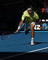 2011 Australian Open IMG 7546 2 (5444823888).jpg