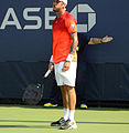 2014 US Open (Tennis) - Tournament - Andreas Haider-Maurer (15101309142).jpg