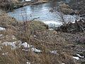 20150219 117 Wienerwaldsee (Large) (16581017822).jpg