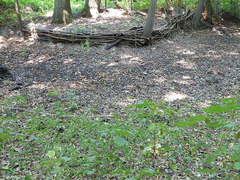 File:20150811 xl P1020017 Strausberg Trockenheit im August-das Annafliess ist seit Wochen ausgetrocknet.JPG