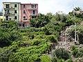 20160811 032 Cinque Terre - Corniglia (28445018333).jpg