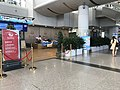 201908 Sichuan Airlines Domestic Flights Priority Check-in Area at CTU T1.jpg