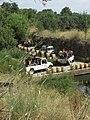 25-06-2017 Jeep safari crossing the River Quarteira (2).JPG