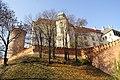 7386vik Wawel. Foto Barbara Maliszewska.jpg