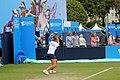 7 Eastbourne Tennis 2015 (48787667186).jpg